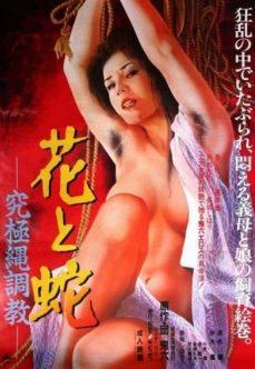 Japon Hemşire Klasik Erotik Film izle